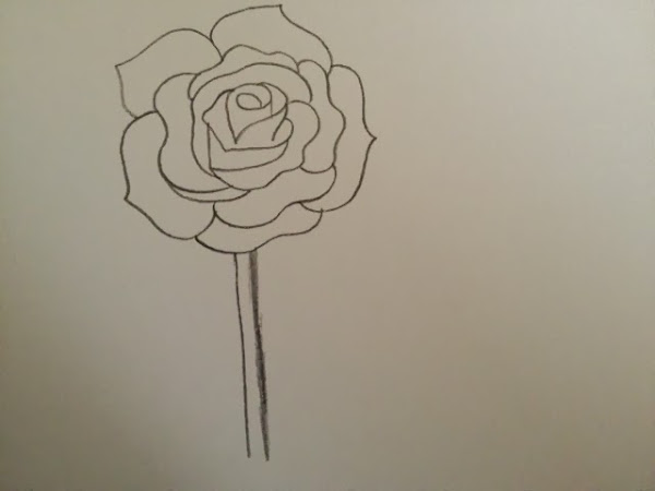 How to draw a realistic rose flower step by step for Easy way to paint a rose