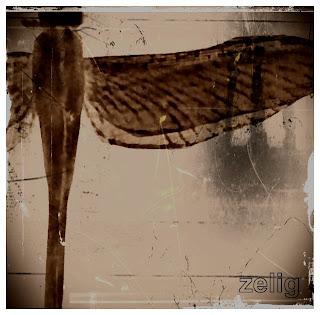 Zelig El Gran Final EP 2013
