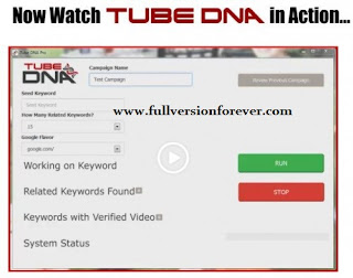 Tube DNA Pro download software that help to How to top rank youTube Video?