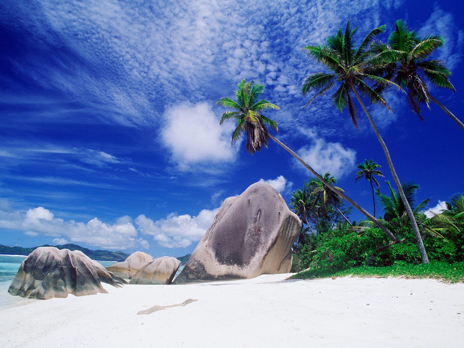 http://3.bp.blogspot.com/-Qglnl2qqHFU/Tn6Y3ZoVc7I/AAAAAAAADCI/QWOcb-J-nbw/s1600/Nature%2BWallpapers%2B%252888%2529.jpg