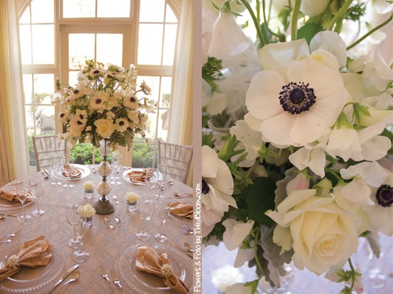 louisville ky wedding resource wedding inspiration anemone flowers