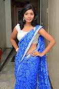Bindhu latest sizzling saree pics-thumbnail-8