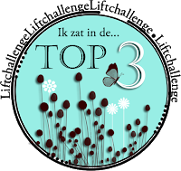 top 3 behaald