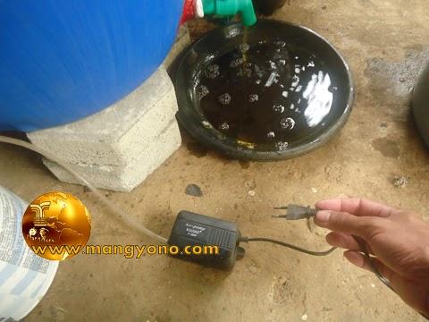Untuk memperlancar mengeluarkan cairan pupuk organik cair lewat kran harus menghidupkan pompa
