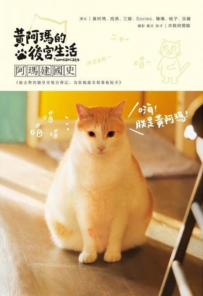 志銘與狸貓新書【黃阿瑪的後宮生活:阿瑪建國史】預購 哪裡買 主人