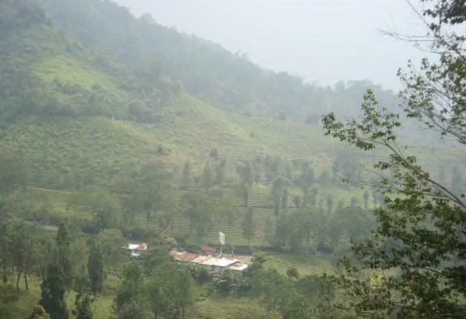 Jadwal Buka Tutup Jalur Puncak Jawa Barat