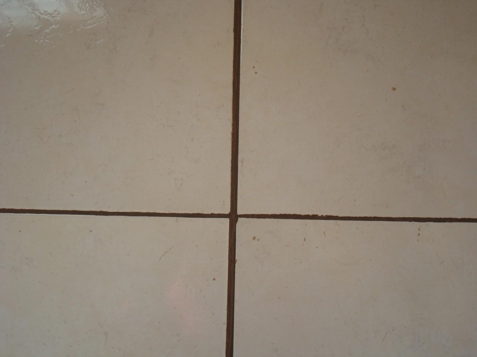 Construindo um Castelinho: Tem gosto pra tudo! #3F2C1F 1600x1200 Banheiro Branco Com Rejunte Escuro