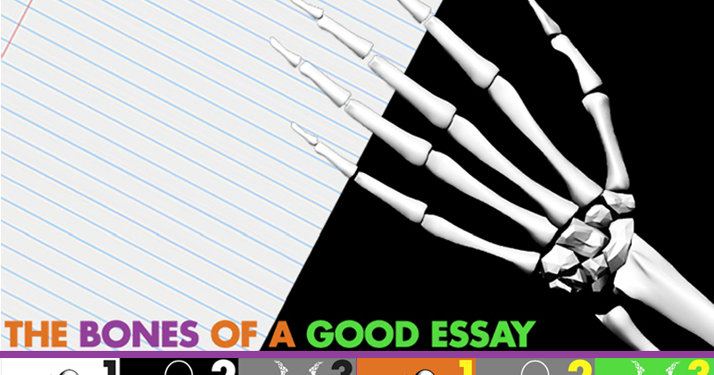 bones essay Unlike most editing & proofreading services, we edit for everything: grammar, spelling, punctuation, idea flow, sentence structure, & more get started now.