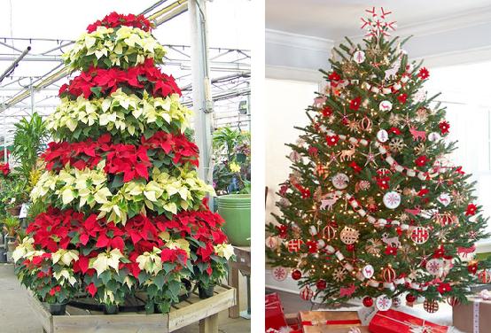 Y si te casas en nochevieja cuenta con nuestra - Arboles de navidad bonitos ...