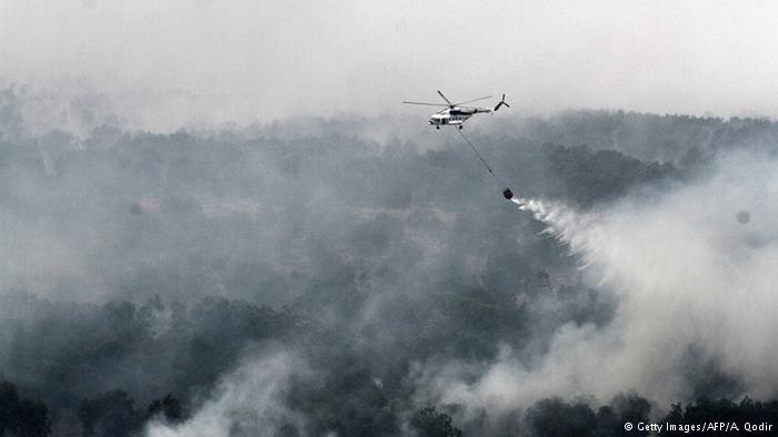 Pembakaran Hutan Oleh PT Bumi Mekar Hijau