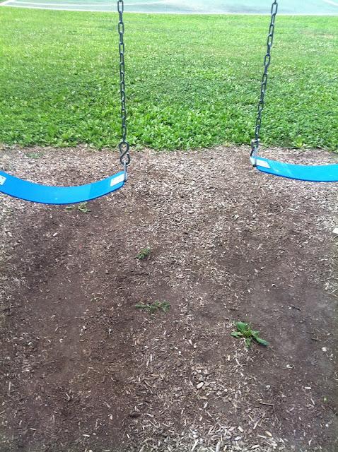 picture of empty swings