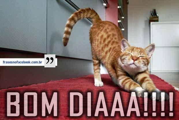 Bom Dia Frases Para Facebook Curta Piadas