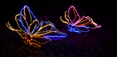 Garden Lights, Holiday Nights, Atlanta Botanical Garden