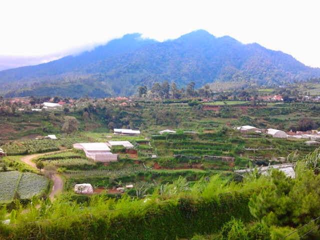 http://vilaistanabungavilage.blogspot.com/2014/11/villa-murah-di-cisarua-lembang.html