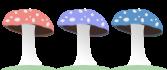 3 shrooms