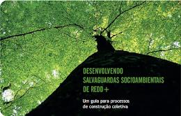 DESENVOLVENDO SALVAGUARDAS SOCIOAMBIENTAIS DE REDD+
