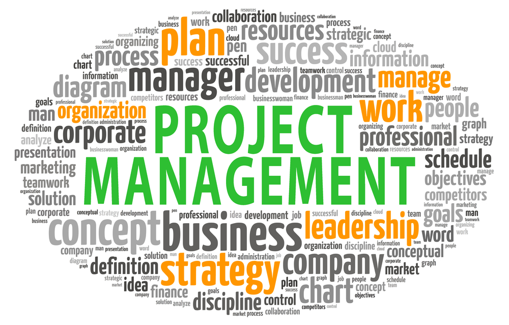 thesis on project management in mba