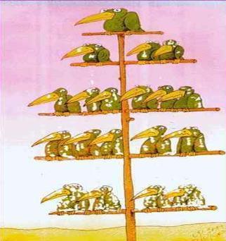 http://3.bp.blogspot.com/-Qjem1VQFCTo/Tfocljz42hI/AAAAAAAAAK8/rPP9zFU0hI0/s1600/hierarquia.jpg