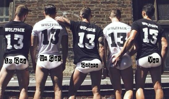 Lo Que Un Gay Quiere Ver