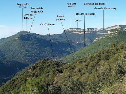 Vistes de ponent des de la carena de les Roques del Coix