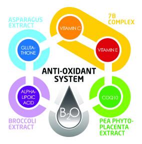 6 CORE ANTI-OXIDANT SYSTEM