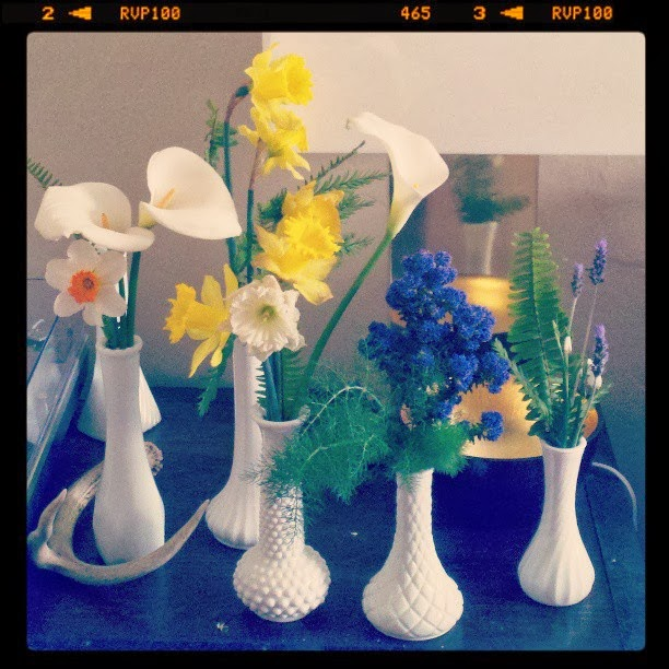 daffodils, calla lilies, narcissus, fennel, ceanothus, ferns, lavender
