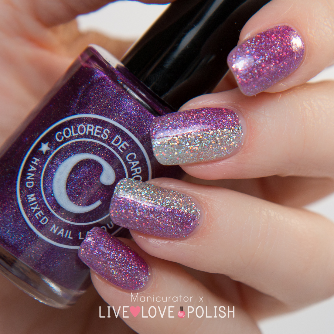 Colores-de-Carol-Bling-Amethyst-Swatch-Live-Love-Polish