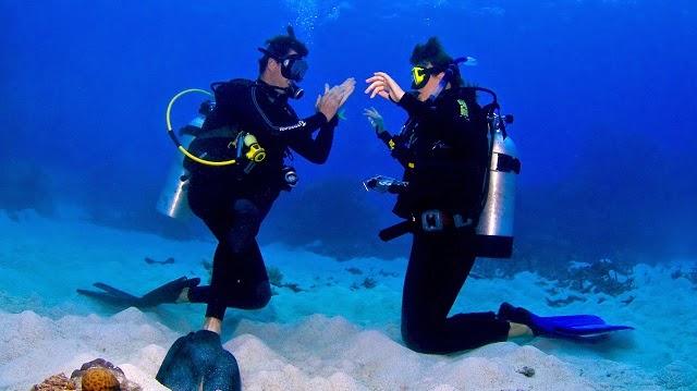 Tips Diving Bagi Pemula Ala Riyanni Djangkaru
