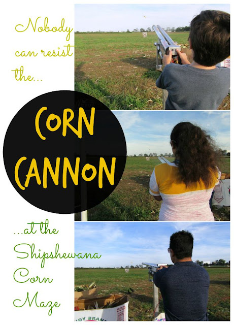 Try to resist the Corn Cannon at Shipshewana Corn Maze