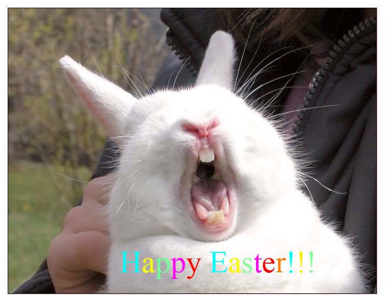 The Sarah Billington Blog: Happy Easter and enjoy your noms! Raccoon Eyes Makeup Crying