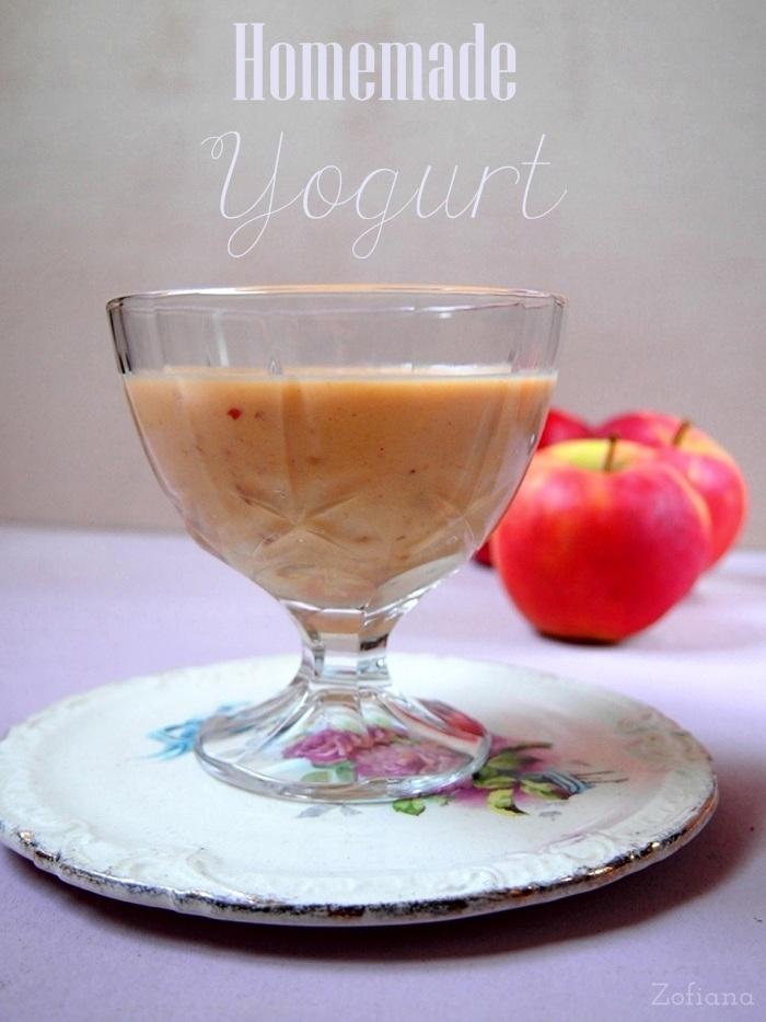 homemade fruit yogurt