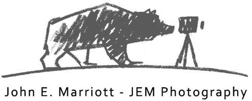 John E Marriott's Wildlife Photography Blog