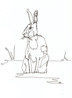 #inktober hare contour drawing