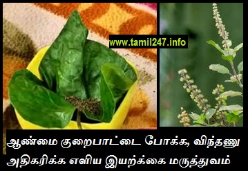 Natural home remedy for sperm count increase, aanmai kurai, vindhanu ennikkai kurai theera vaithiyam, herbal medicine in tamil,
