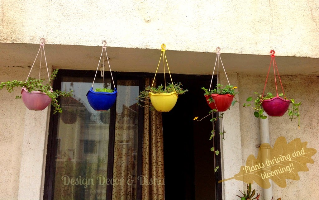 Design decor disha hanging baskets in my small balcony - Hanging plants in balcony ...