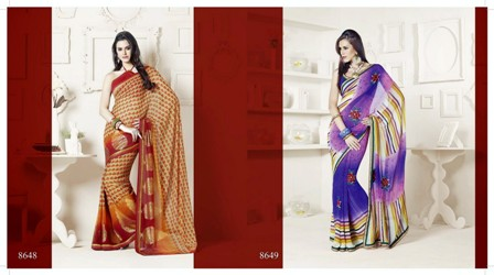 Professional-Saree-Draping