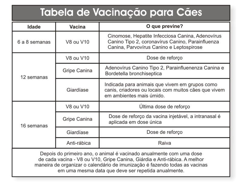 vacinacao_caes.jpg