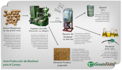 ciclo biodiesel biocombustible transgenicos soja maiz girasol colza
