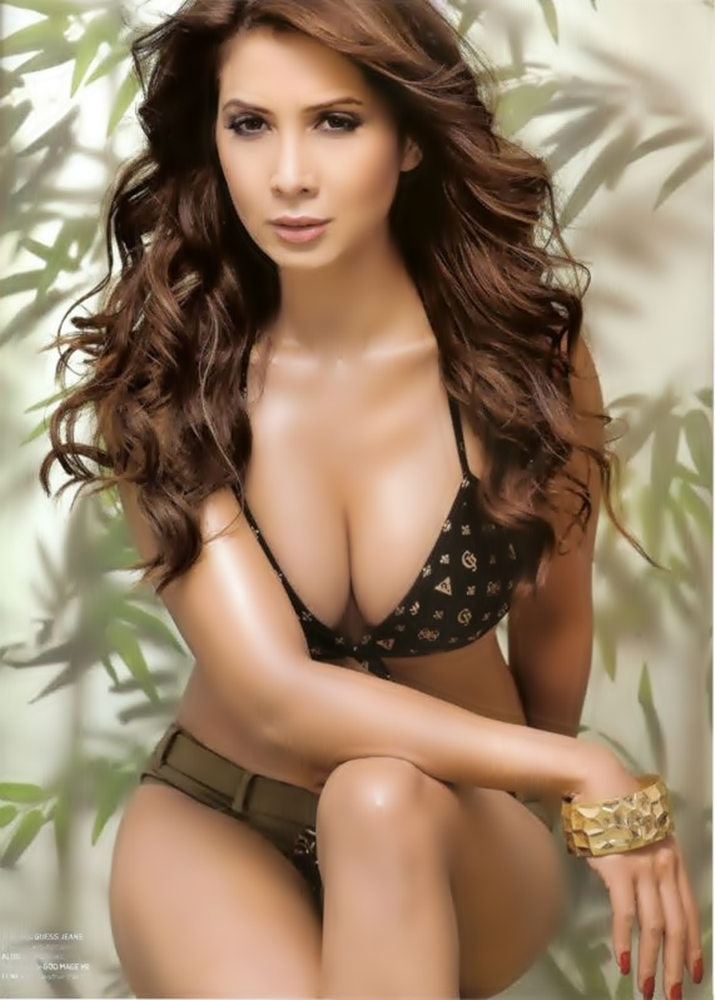 spicy heroines: kim sharma hot in bikini