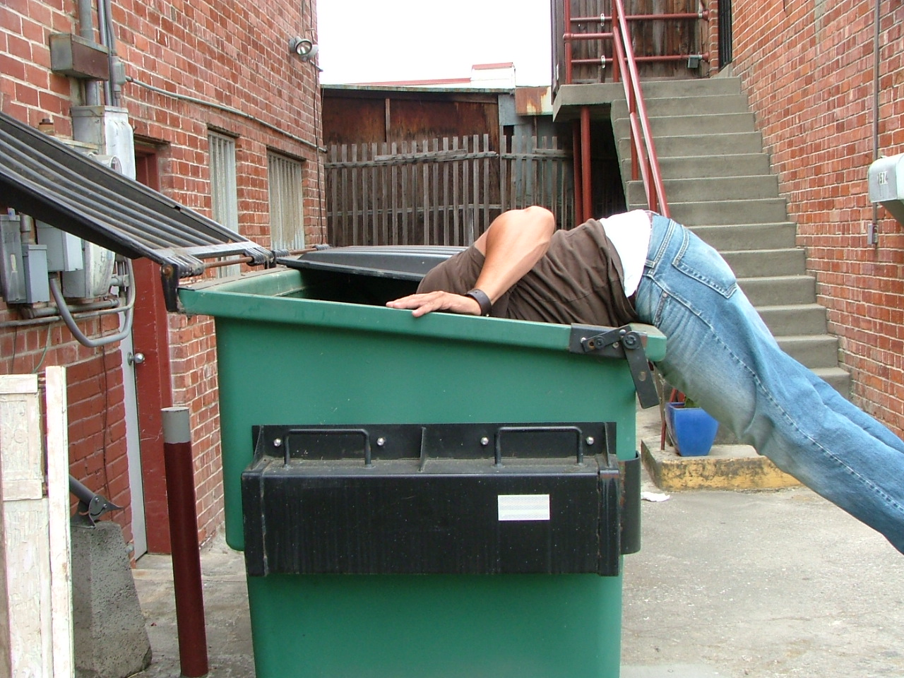 dumpster diving The art & science of dumpster diving [john hoffman] on amazoncom free shipping on qualifying offers in step-by-step, illustrated detail, john hoffman shows you how to use dumpster diving for food, clothing, appliances.