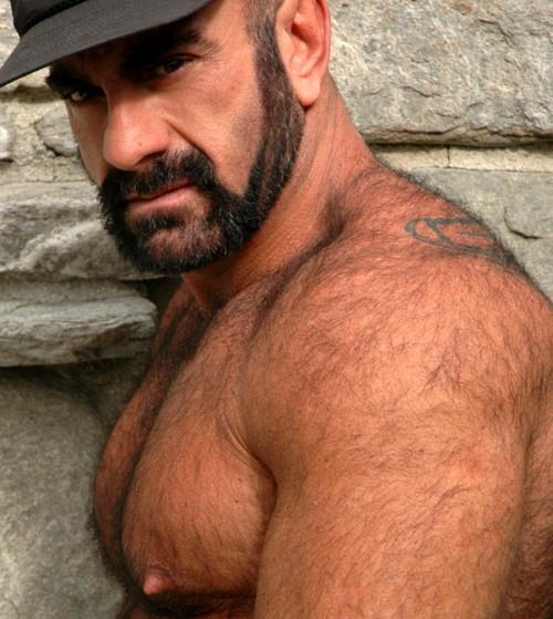Hairy daddy hunks