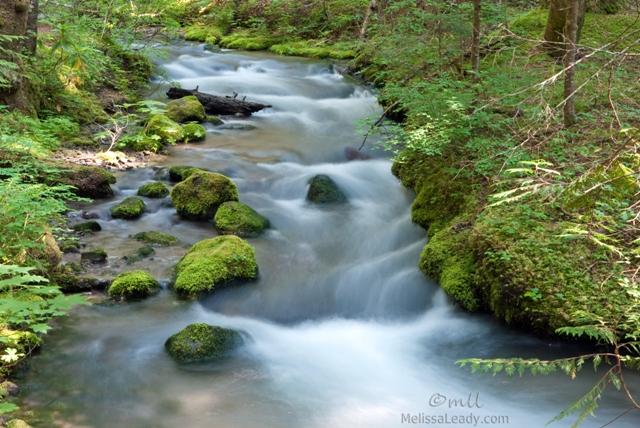 Heading Upstream