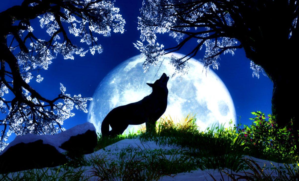 Popular   Wallpaper Horse Wolf - moon-wolf-desktop-free-wallpapers-animal-wallpapers-free-hd  Collection_307539.jpg