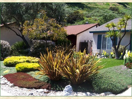 Xeriscape landscape design landscape design for Xeriscape garden design