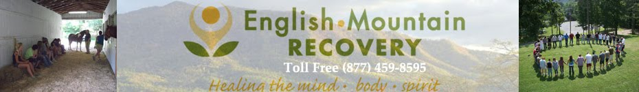 Tennessee Alcohol Drug Rehab Treatment