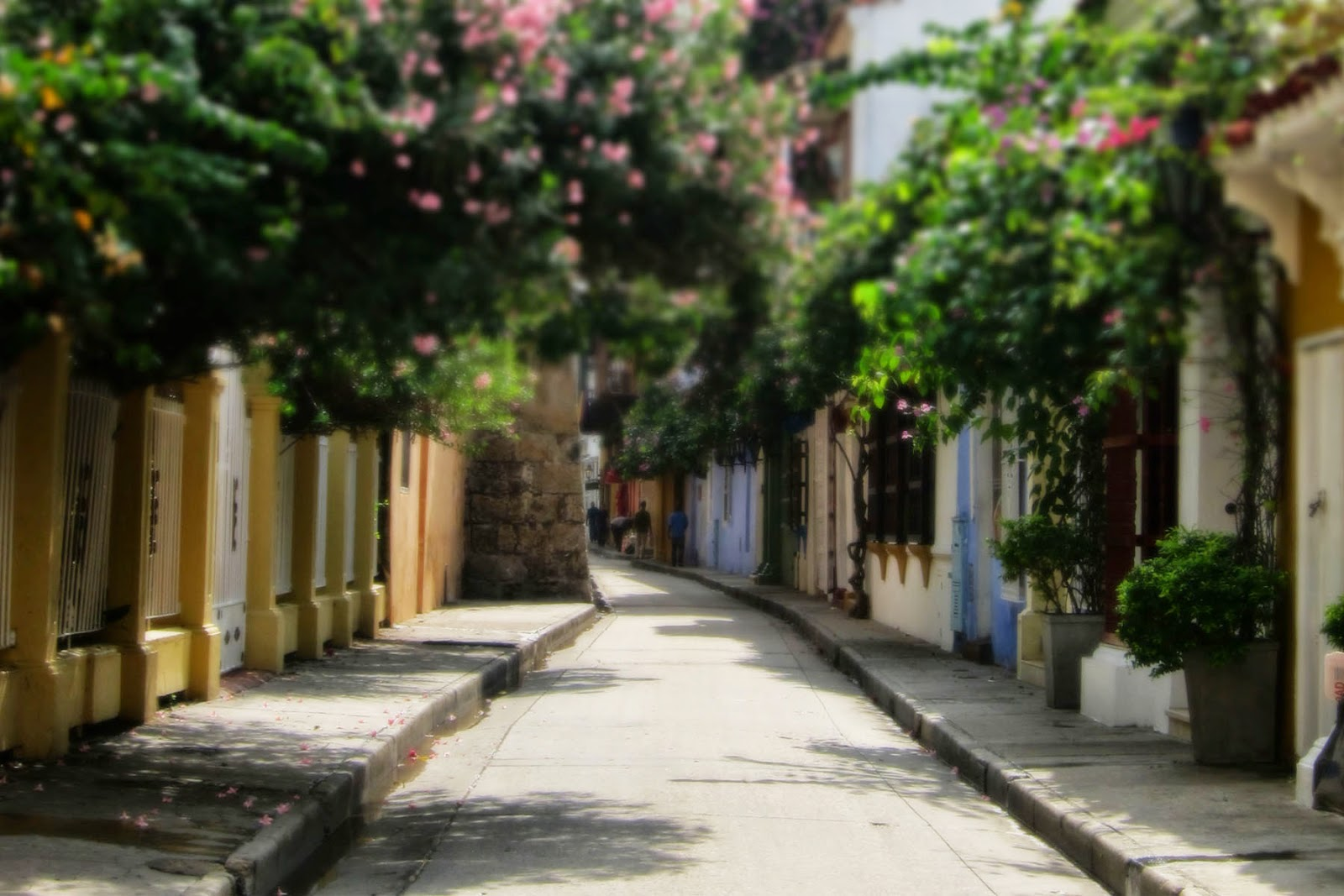 Cartagena, Colombia 2014