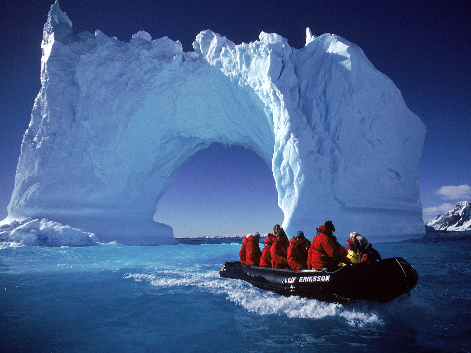 Sam daily times the voice of the voiceless for Can i go to antarctica