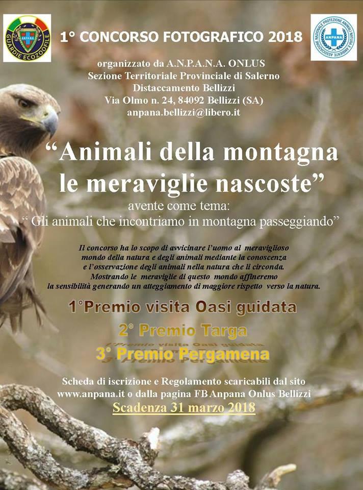 """Concorso Fotografico """"Animali della montagna le meraviglie nascoste"""""""