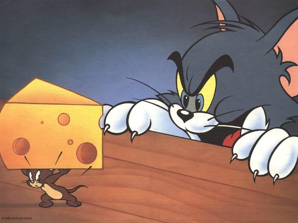 http://3.bp.blogspot.com/-QoGH3Lv6vN4/UJPID6mrDpI/AAAAAAAAAZ0/O_z5Ds_cwm4/s1600/cartoons_cats_cheese_tables_mouse_tom_and_jerry_tom-and-jerry_cartoon_screenshot_cat_table_desktop_1024x768_wallpaper-101411.jpeg