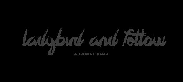 ladybird & fellow